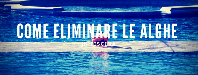 Come eliminare le alghe in piscina